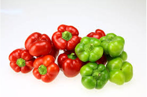 Fresh Pepper - test